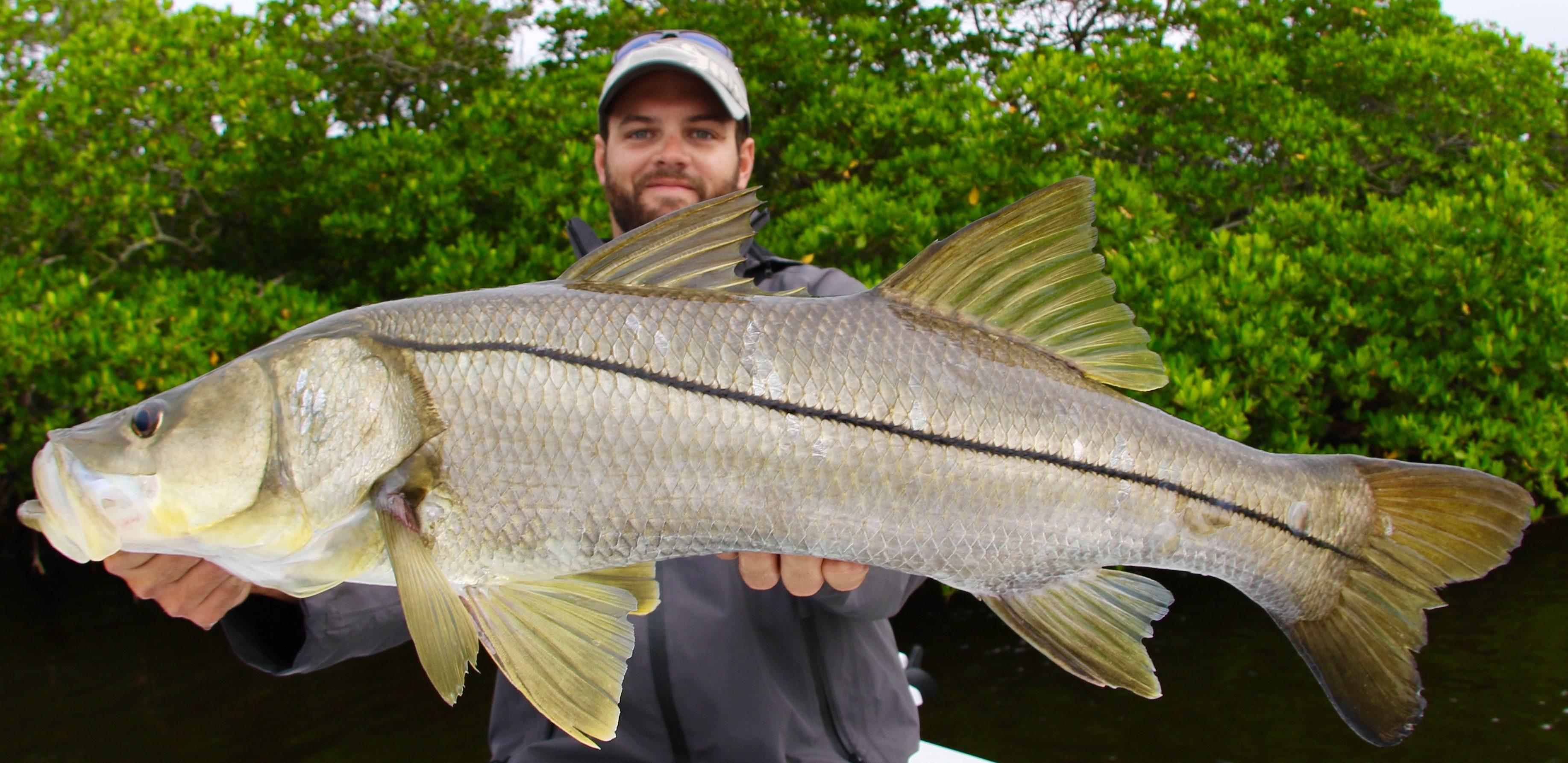 No boats, Big Fish - Everglades Fishing Guide